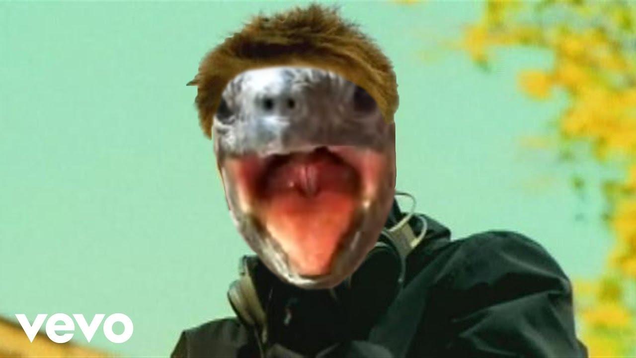 Darude Sandstorm Turtle Remix Youtube
