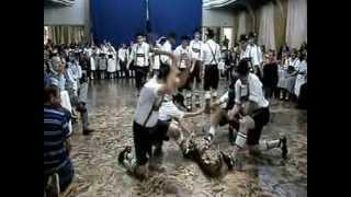 Holzhacker Tanz por Orignal Einigkeit Tanzgruppe