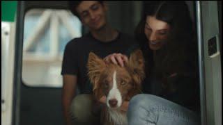 Purina DOG CHOW Juntos la vida es mejor (2021)