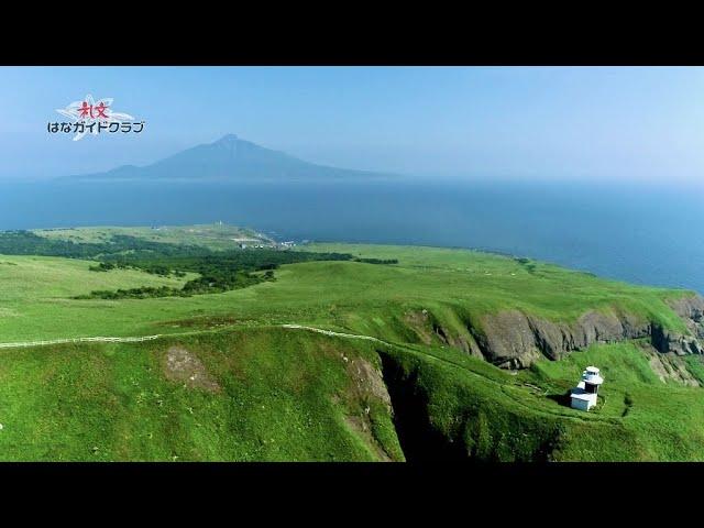 ドローン空撮 桃岩展望台〜知床コース(2021年7月26日撮影)