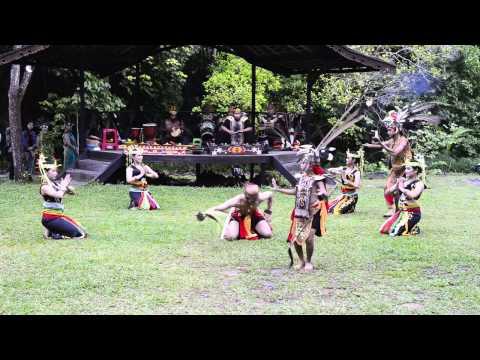 Dayak Healing Dance