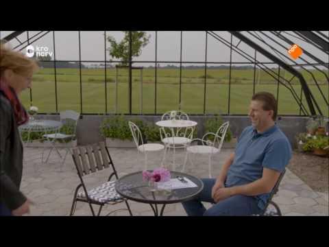 friesland dating