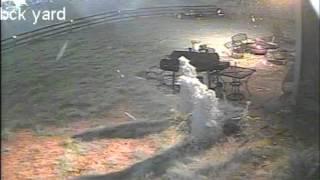 back yard F4 tornado Mayflower Plantation