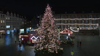 O' Tannenbaum, O' Tannenbaum 🎄: Vorweihnachtliche Stimmung auf dem Marktplatz