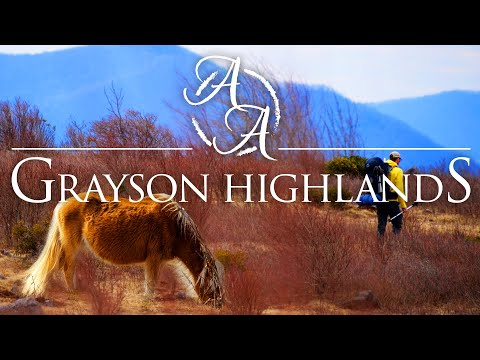 grayson-highlands-4k-|-hiking-with-wild-ponies-on-the-appalachian-trail