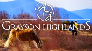 Hiking with Wild Ponies in the Mountains of Virginia at Grayson Highlands 4K