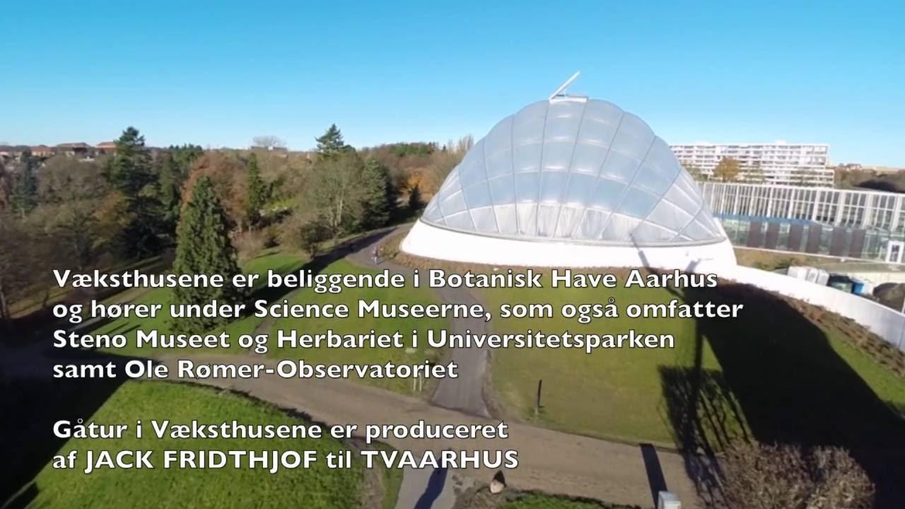 Gåtur I Væksthusene Botanisk Have Aarhus Youtube