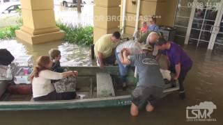 Watch: Stranded fawn rescued from flooded creek