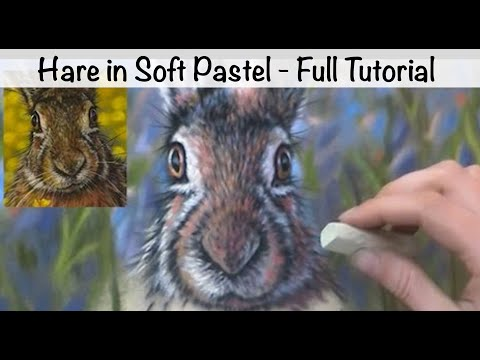 How To Paint Fur On A Hare Pastel Tutorial 2 Youtube