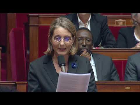 Question au Gouvernement - 6 novembre 2018
