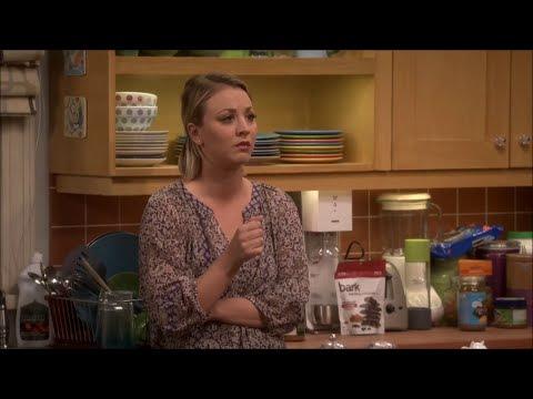 The Big Bang Theory - Have Coitus With Her