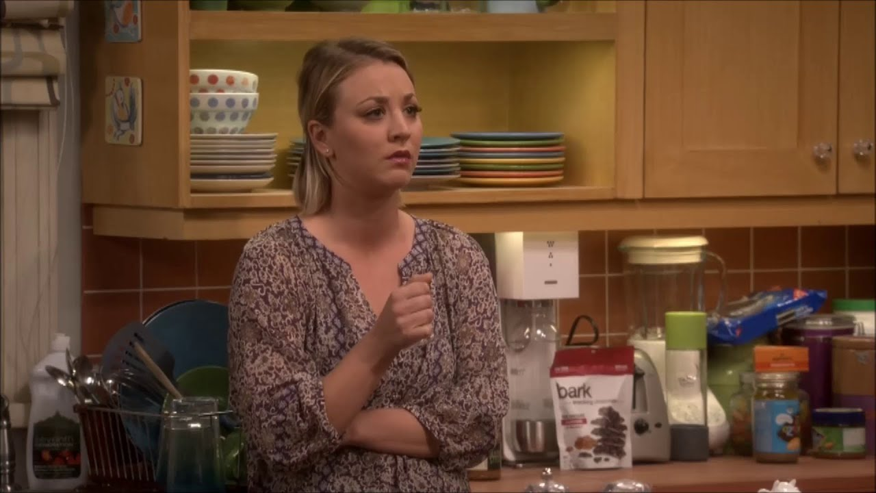 The Big Bang Theory - Have Coitus With Her - Youtube-8894