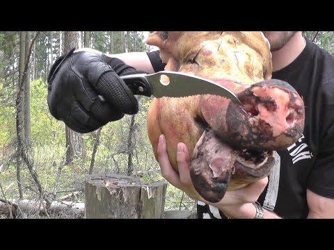 Тест ножей на поражающую способность против свиного черепа