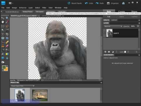 How can I move an object in photoshop after pasting it ...