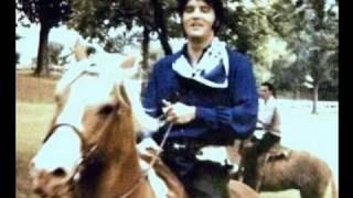 U.S. Male......Elvis