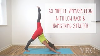 60 Minute Vinyasa Flow | Low Back and Hamstring Stretch