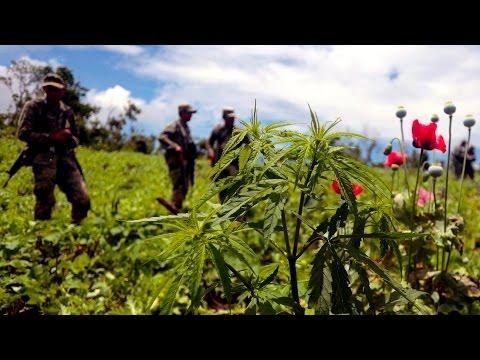 Are Drug Legalization & Capital Punishment Splitting the UN?