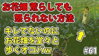 #61【ゼルダの伝説】オコバの理不尽が炸裂wお花畑で荒らしても怒られない方法【実況プレイ】ブレス オブ ザ ワイルド Nintendo Switch thumbnail