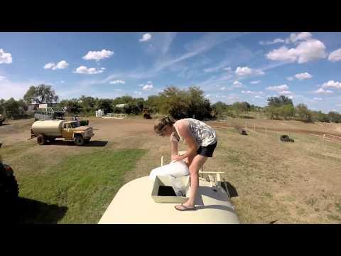 ALS Challenge Gillespie County Fair Association