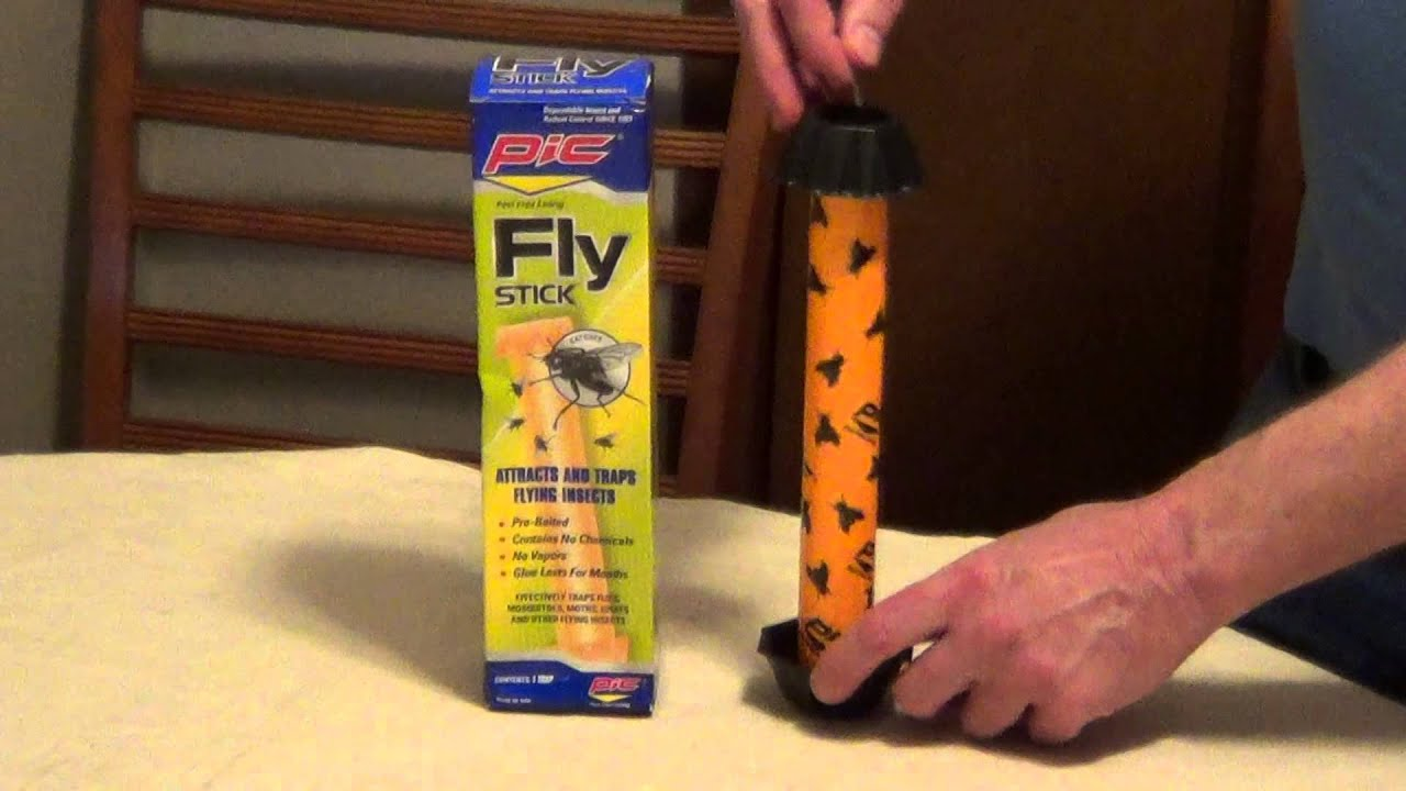 how to catch flies house fly trap youtube. Black Bedroom Furniture Sets. Home Design Ideas