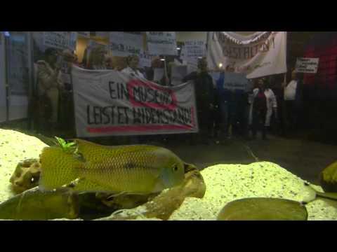 Demo für das Deutsche Museum Bonn - Bonus-Clip 3, mit Fischen