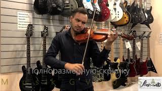 Обзор скрипки SinoMusik GVT015A 4/4 (Antonio Vivaldi Primavera. Времена года. Весна. Май.)