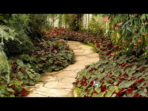 I costi del giardino. from YouTube · Duration:  3 minutes 48 seconds