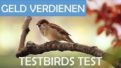 Online Geld verdienen mit Umfragen - testbirds Test 2019