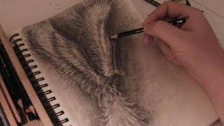 How to Draw a Phoenix - Real Time Drawing Tutorial