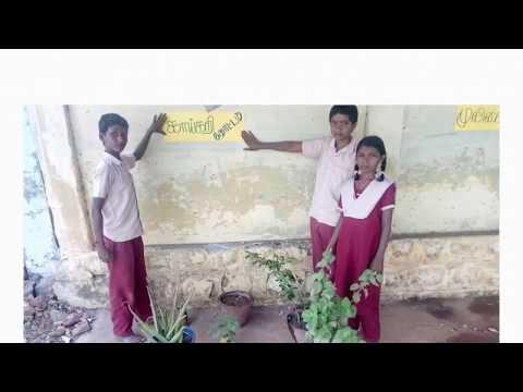 Bio & nonbio degradable waste mangement in our school, PUMS, Kammalapatti