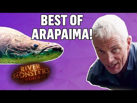 Best Of Arapaimas - River Monsters