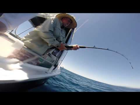Charter Fishing Off Coffs Harbour With KC's