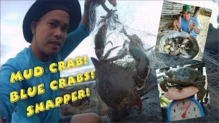 "Mud Crab! Blue Crabs and Snapper Catch in Fishing Net ""Lambat"" 