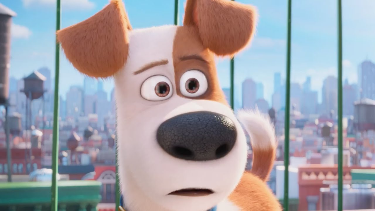 the secret life of pets official trailer 3 us 2016