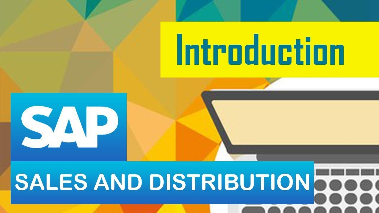 hight resolution of sap sd introduction to sd module in sap sales distribution sap erp