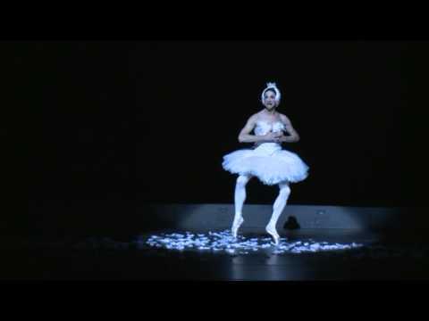 Les Ballets Trockadero de Monte Carlo - The Dying Swan