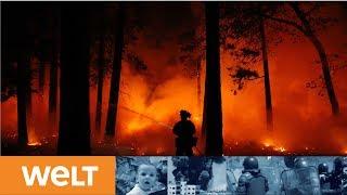 PROMIS FLIEHEN: Gigantische Feuerwalze bedroht Malibu - Feuerwehr machtlos