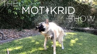 The Mot & Krid Show - Episode 02