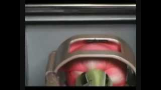 Floragraf - Der Blumendrucker