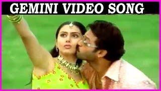 Gemini - Super Hit Telugu Video Song || Venkatesh | Namitha