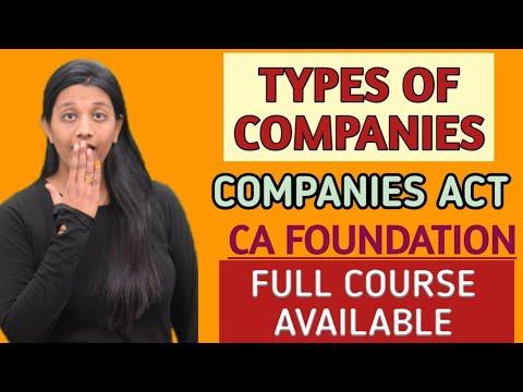 Chapter 5 Part 4 Ll Types Of Companies Ll CA Foundation Ll CA Kanika Khetan