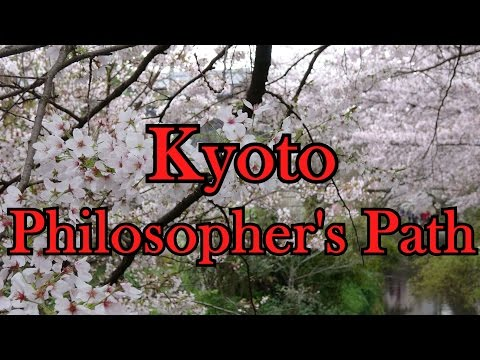Kyoto Philosopher's Path 4K
