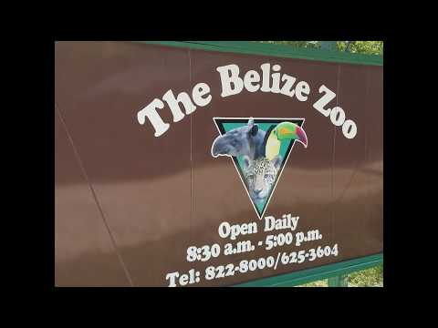 Belize Zoo 2017