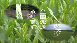 【かごしま市商工会 会員CM】 ブログ 茶ごころ坂之上の茶畑日記 http:...