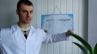 видео Анатомия грудных мышц. Как накачать грудь. Бодибилдинг.