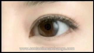 Cibavision Focus dailies aquacomfort contact lens コンタクトレンズ通販.