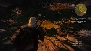 The Witcher 3: Wild Hunt_20170915121407