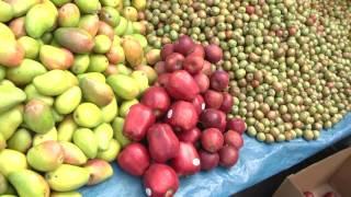 Monitoreo de precios de las frutas de la temporada en mercado de Comayagüela