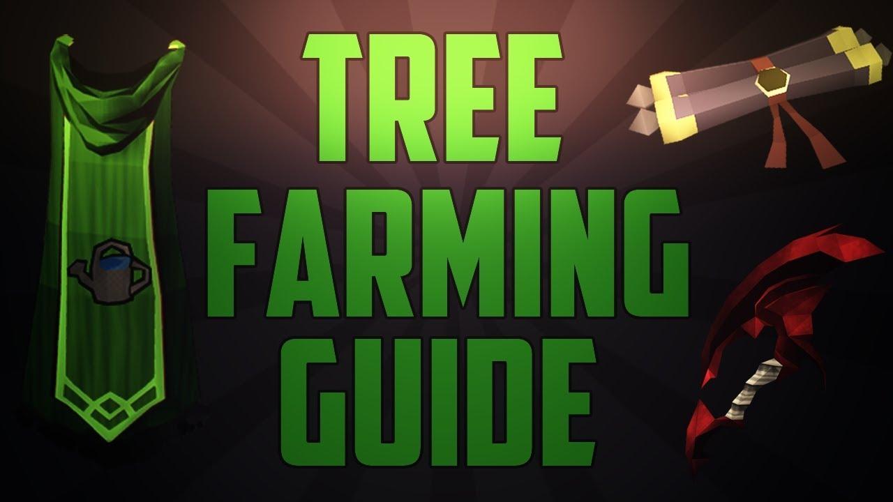Runescape Fruit Trees Part - 27: Runescape L Farming Tree U0026 Fruit Tree Run Guide 2013
