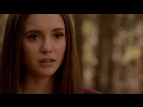 Never Say Never. The End. TVD